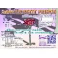 5/4(土)「LE PETIT PRINCE」Picture Live